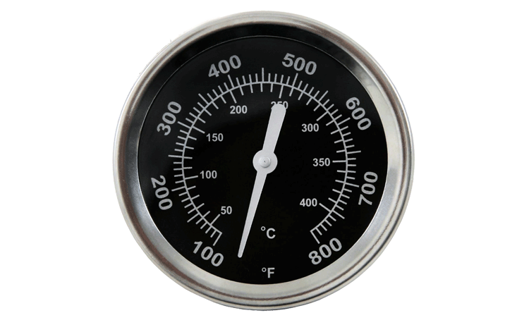 Thermometer Pro Serie